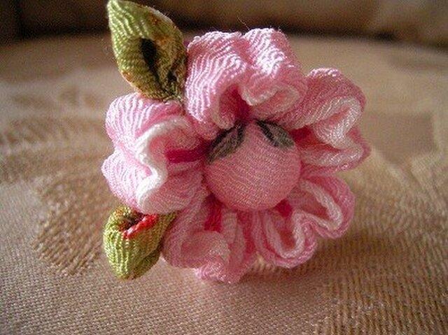 さくらの花エンピツ(葉っぱつき桜)の画像1枚目