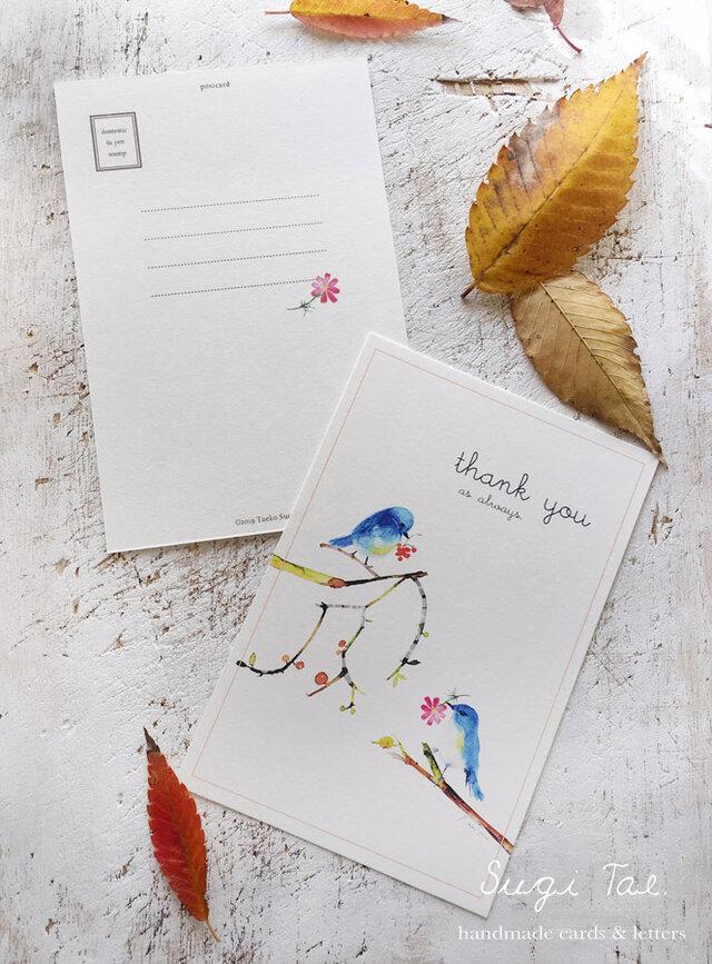 青い小鳥のカードの画像1枚目