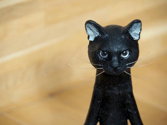 The Cat 200% 【クロネコ】【送料無料】の画像1枚目
