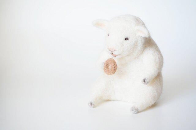 Donut Sheepの画像1枚目