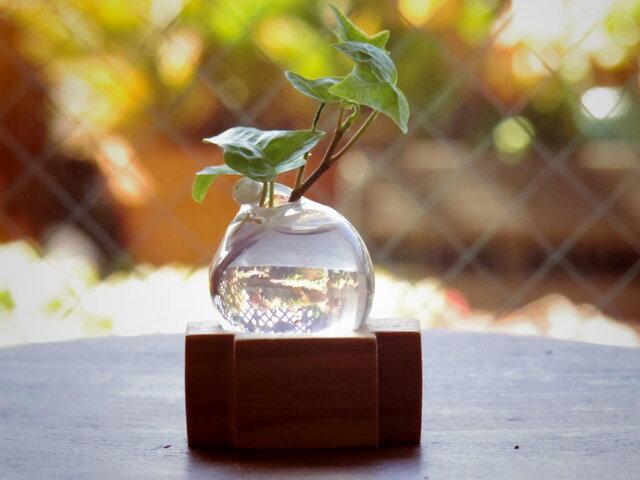 小さな吹きガラスの一輪挿し シマトネリコの木の画像1枚目