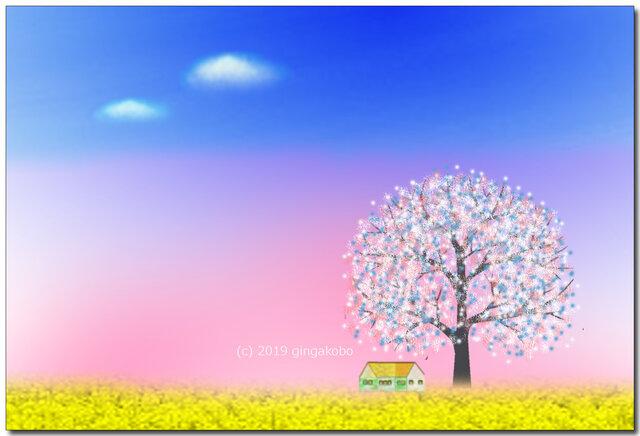 「春だよん^^」 ほっこり癒しのイラストポストカード2枚組No.727の画像1枚目