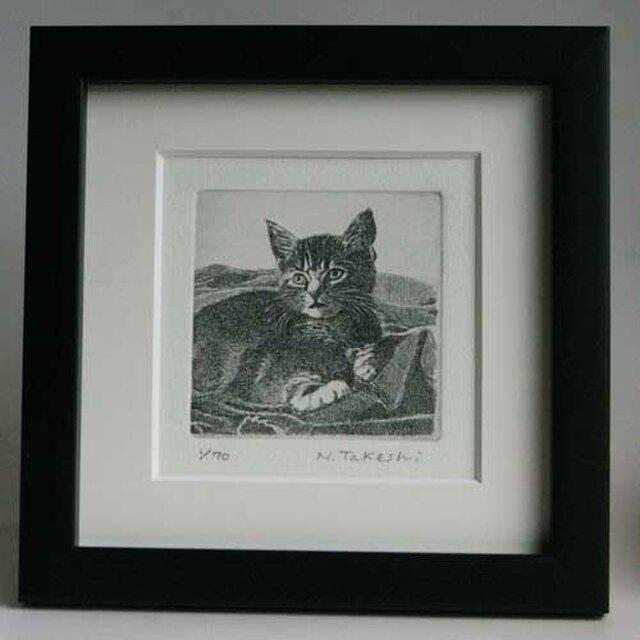 布の上の子猫/ 銅版画 (額あり)の画像1枚目
