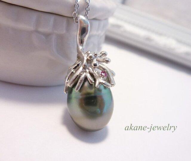 黒蝶真珠 木の実のネックレスの画像1枚目