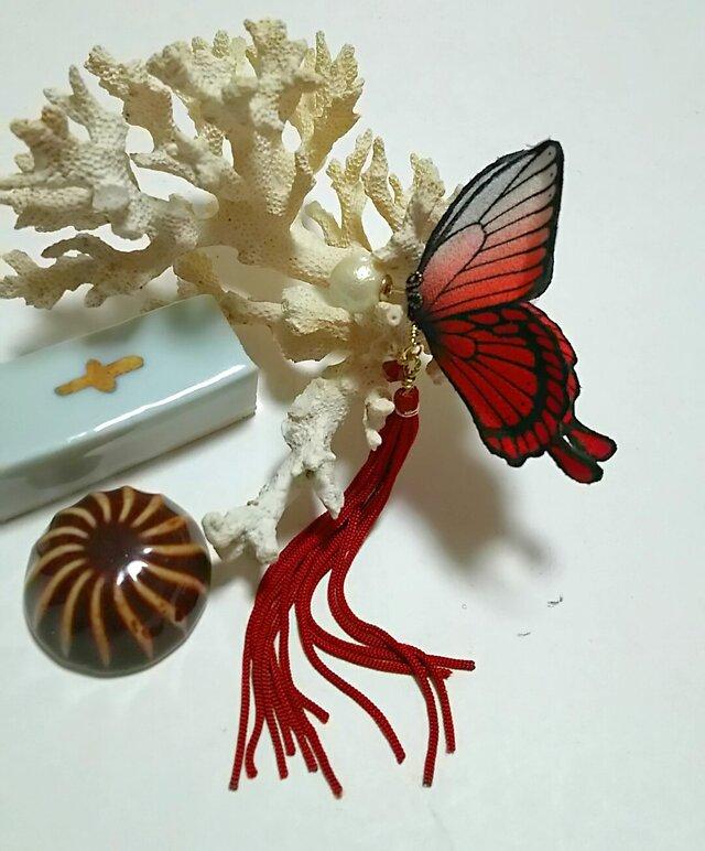 蝶のピアス (大) アゲハの画像1枚目