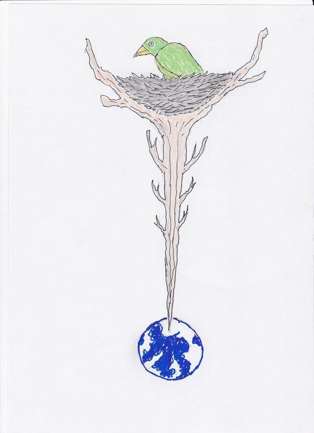 A4ポスター 宇宙に鳥の巣の画像1枚目