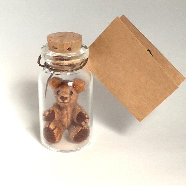 2017年4月10日 Bottled Bearの画像1枚目