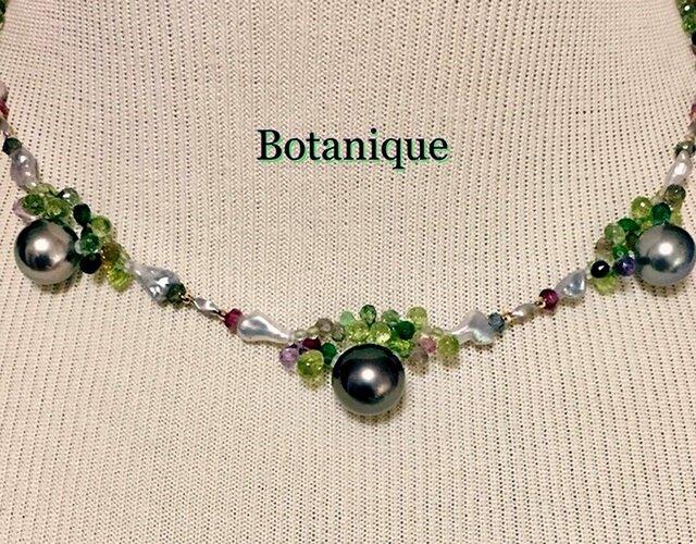 Botanique(ボタニーク)の画像1枚目