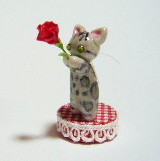 にゃんこのしっぽ〇母の日〇カーネーション〇猫〇ベンガルの画像1枚目