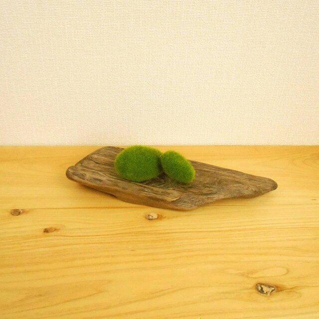 【温泉流木】年輪を重ねた木目が美しいミニ台座 置台 流木インテリアの画像1枚目
