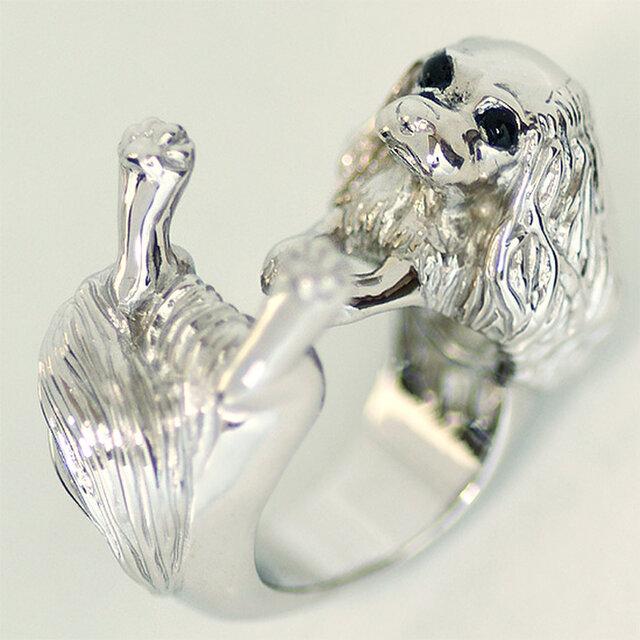 抱っこポーズのキャバリアリング【送料無料】大きな瞳と垂れ耳飾り毛のキャバリア犬を可愛いポーズの指輪にしましたの画像1枚目