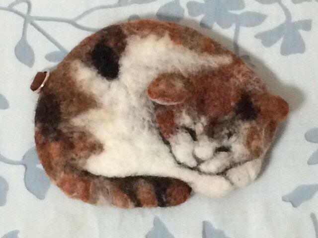 パスケース※丸まり猫の画像1枚目