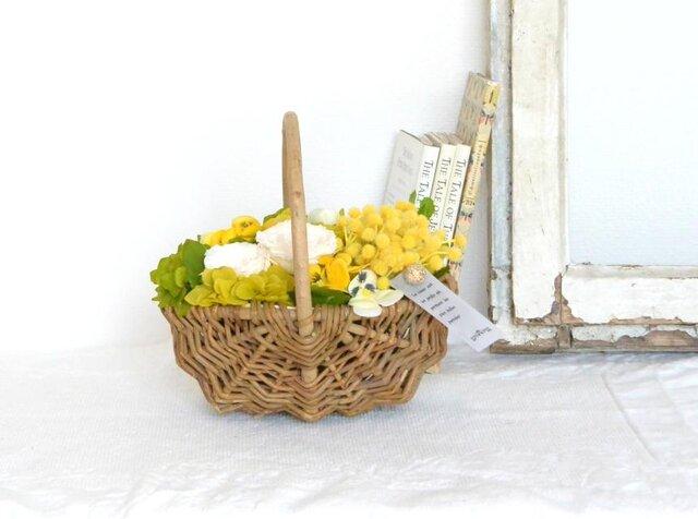 ジャルダン(バラとミモザとパンジー)☆5月11・12日着ご希望の方は、5月3日までにご注文下さい!の画像1枚目