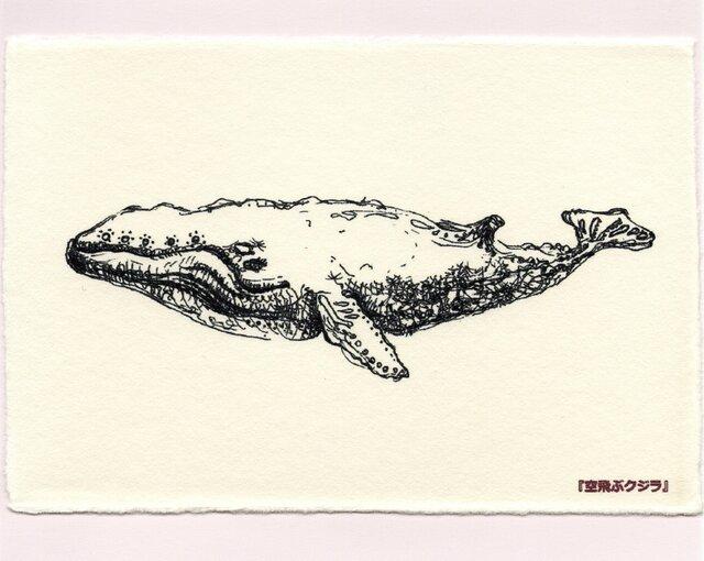 6.『空飛ぶクジラ』(4枚セット)の画像1枚目