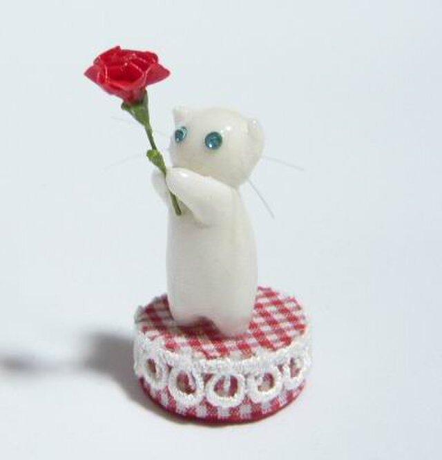 にゃんこのしっぽ〇母の日〇カーネーション〇猫〇スコティッシュフォールド〇白猫の画像1枚目