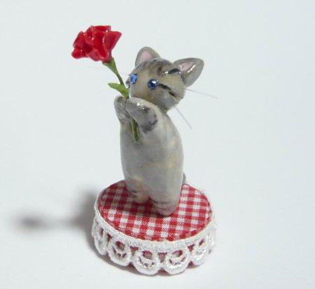 にゃんこのしっぽ〇母の日〇カーネーション〇猫〇チンチラシルバーの画像1枚目