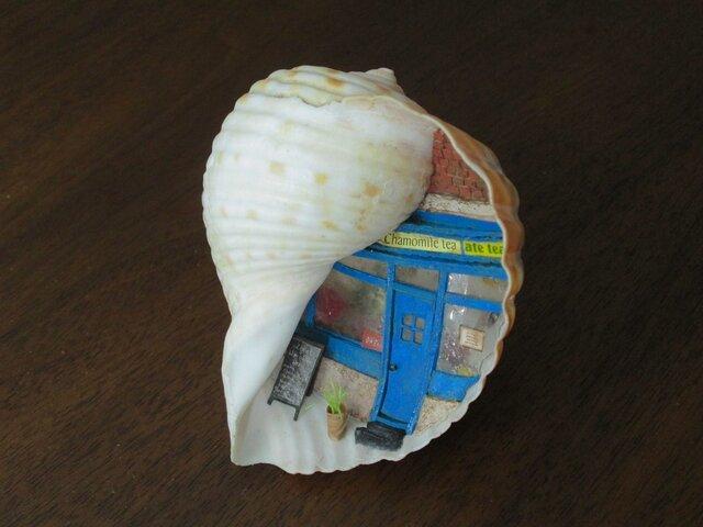貝がら ミニチュア カモミールティー屋の画像1枚目