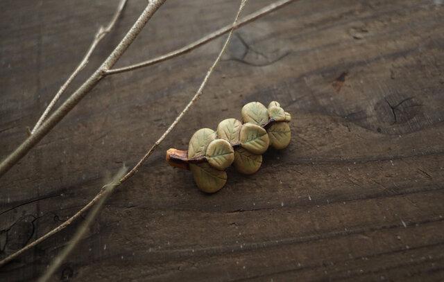 ユーカリの葉ブローチの画像1枚目