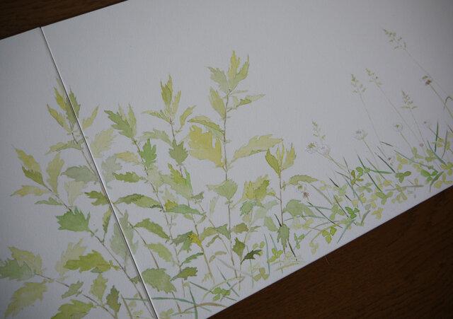 春夏草図の画像1枚目