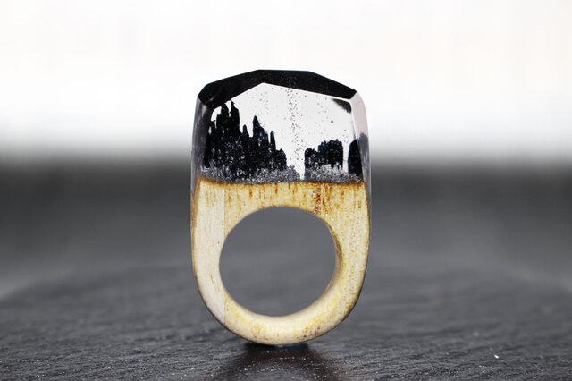 【送料無料】Silver Mine~Resin Wood Ring~の画像1枚目
