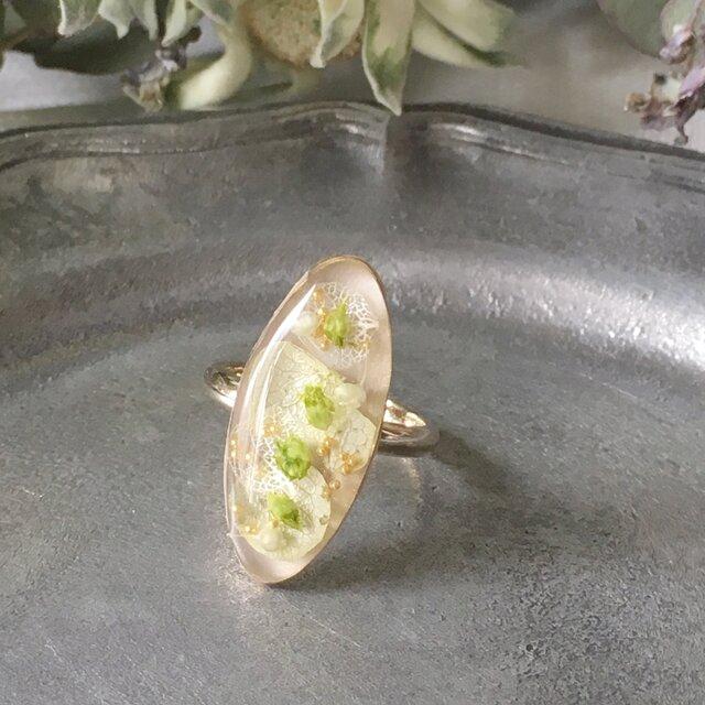爽やかなグリーン紫陽花のオーバルリング(フリーサイズ)の画像1枚目