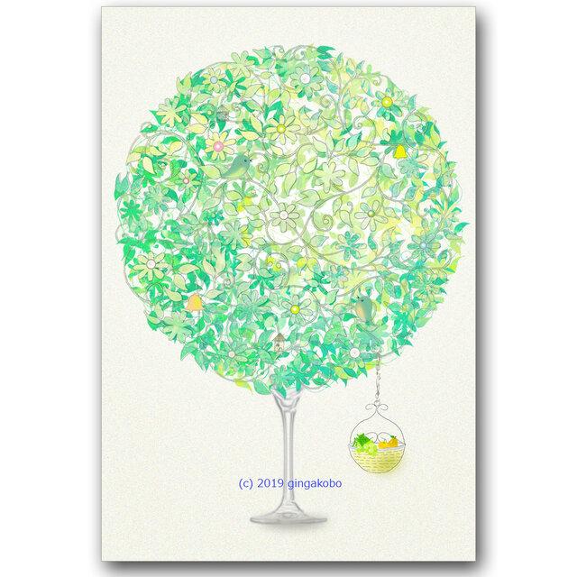 淡樹の教え ほっこり癒しのイラストポストカード2枚組 No785 銀河