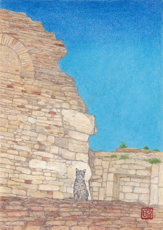 アルルの猫の画像1枚目