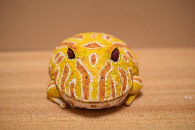 カエルの画像1枚目
