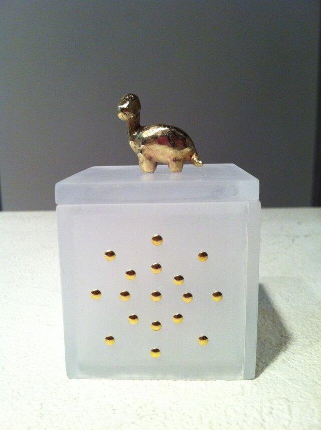 box (恐竜)の画像1枚目