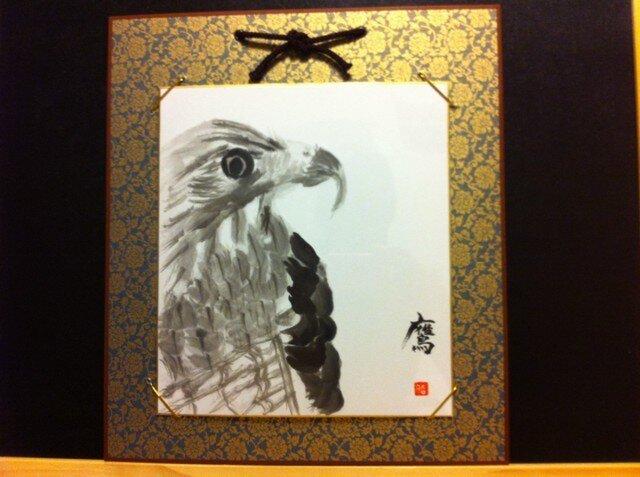 天空を舞う鷹の画像1枚目