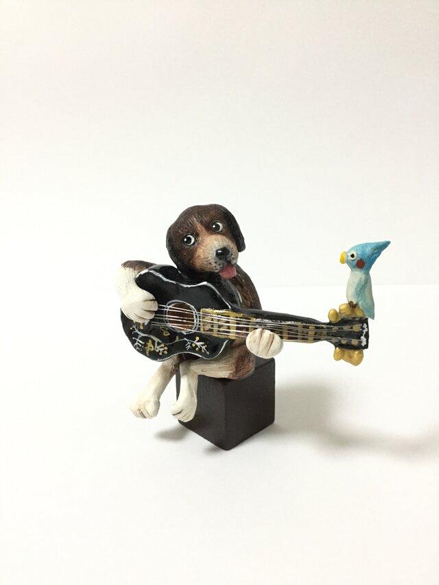 ビーグル犬ギターの画像1枚目