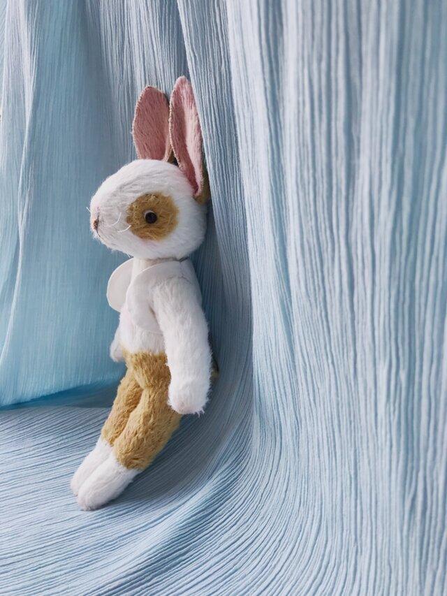 絵本から飛び出してきたようなウサギの男のコの画像1枚目