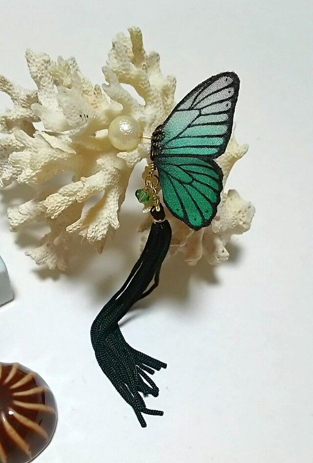 蝶のピアス(小)モルフォの画像1枚目