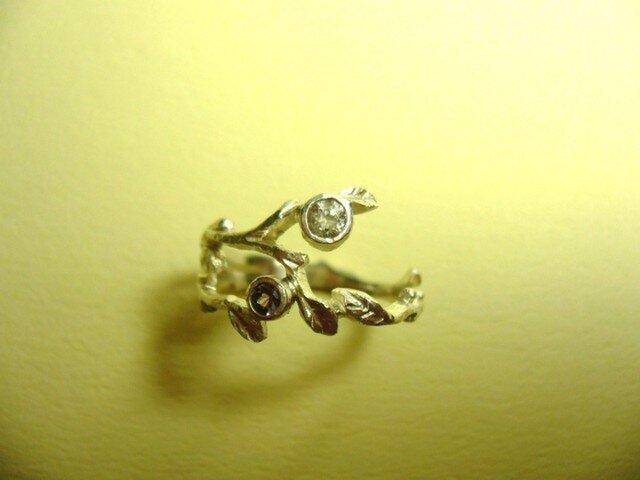 小枝のリングの画像1枚目