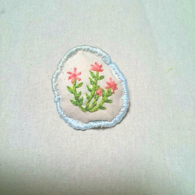ピンクのお花畑の画像1枚目