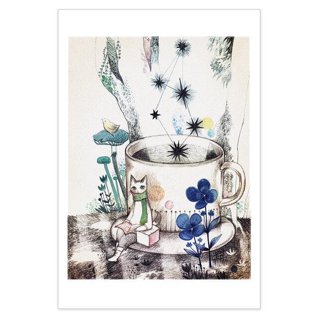 選べるポストカード/2枚セット『No.262 木漏れ陽 檸檬鳥と旅猫』の画像1枚目