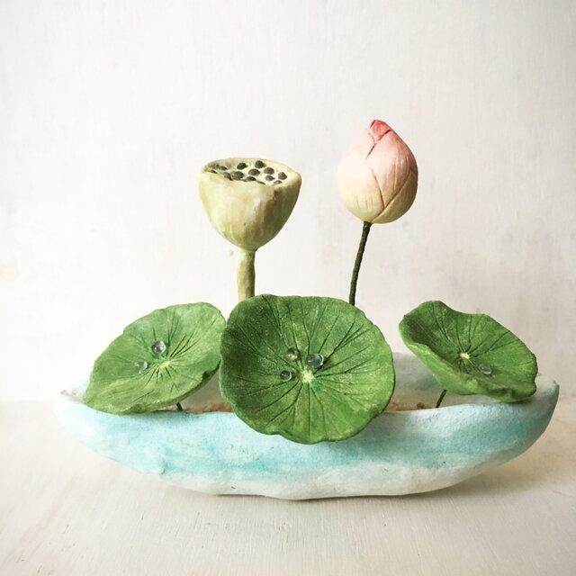 3123.bud 粘土の鉢植え ハスの画像1枚目