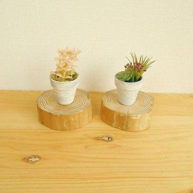 【温泉流木】美しい年輪丸太のミニ台座大2枚セット もの置台 流木インテリアの画像1枚目