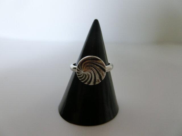 ハッピーオーラが満開!桐谷さんのクール全開の指輪の画像1枚目