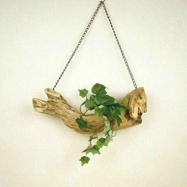 【温泉流木】愛嬌のあるセイウチのような流木の吊り式小物入れ 流木インテリアの画像1枚目