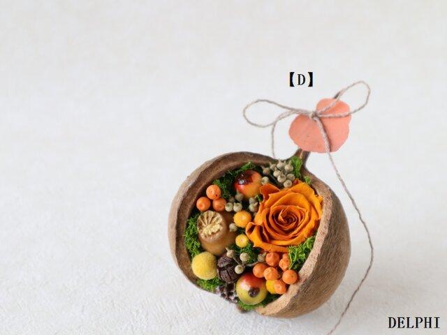 ブッダナッツのアレンジメント(オータムオレンジ)D【プリザーブドフラワー】秋ギフト 秋色 お祝い ハロウィン オブジェ の画像1枚目