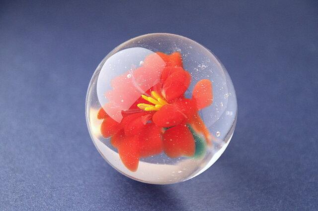 flower Marble(カンナ)の画像1枚目