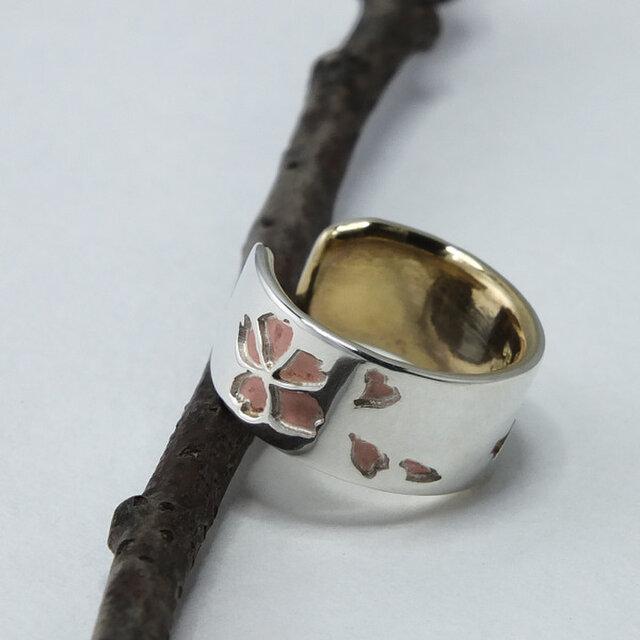 C-SakuraBsW6  銀と真鍮桜のイヤーカフ 幅6mm <鏡面/ツヤ消し 選択可>の画像1枚目