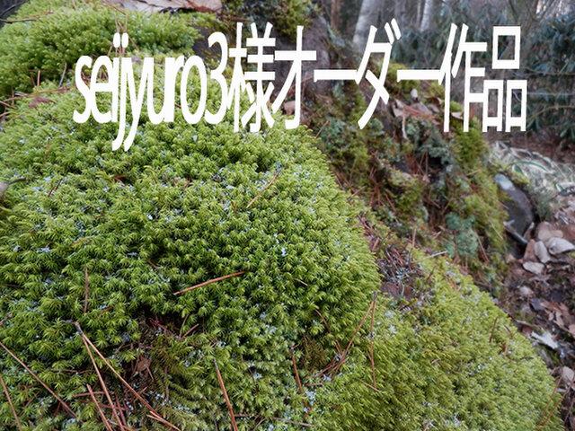 atelier blugra八ヶ岳〜 seijyuro3様オーダー作品の画像1枚目