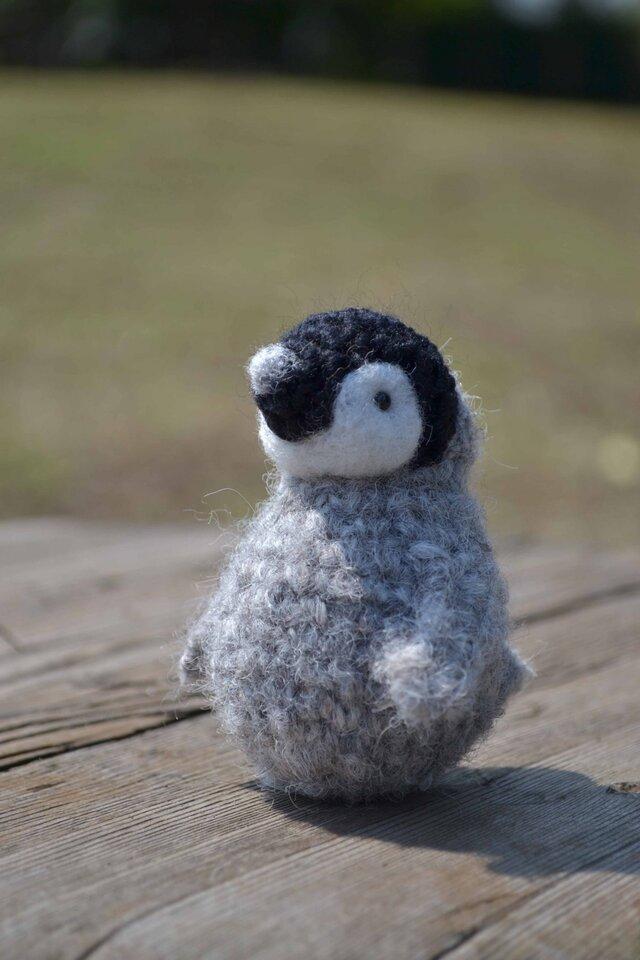おきあがりペンギンの画像1枚目