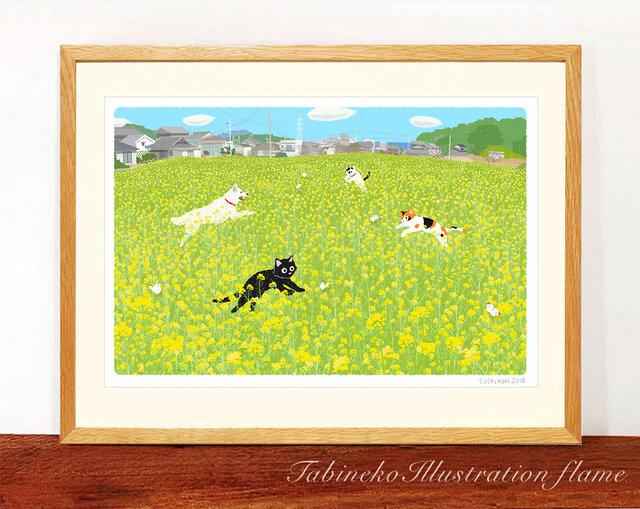 たびねこイラストフレーム-38 菜の花ダンス(太子判サイズの額入り)の画像1枚目