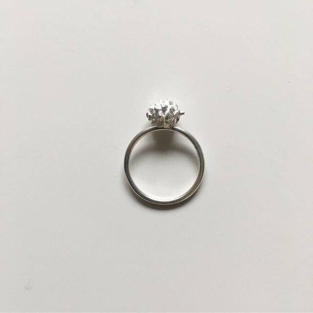 松ぼっくりの指輪の画像1枚目