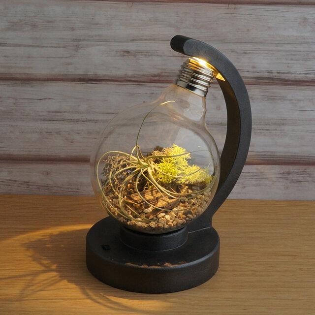 bulb terrarium ball [cast iron]の画像1枚目