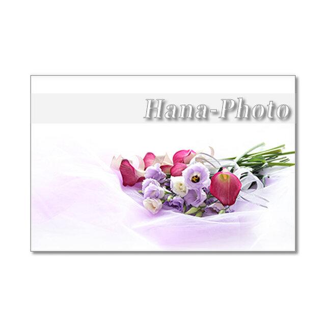 1368)トルコギキョウ、カラー、バラ、アスター、マトリカリア      ポストカード5枚組の画像1枚目
