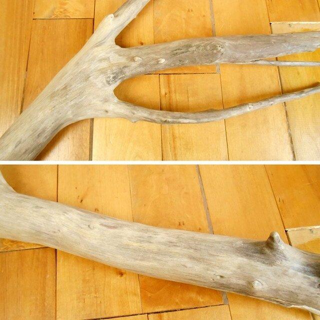 温泉流木】枝から枝が分かれ出る流木素材 インテリア素材 木材 | iichi ...